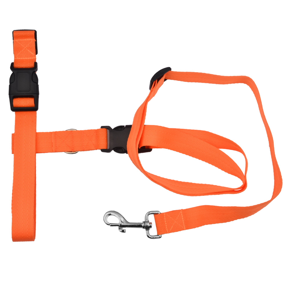 Hands Free Leash For Small Dogs